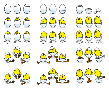 multiple birth: Cute Easter Chicks Hatching from White Eggs Illustration