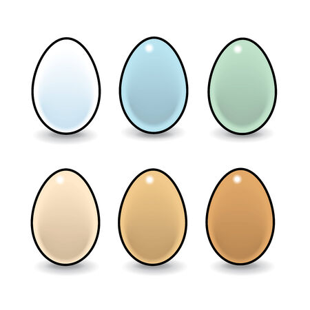 laying egg: Illustration of Six Natural Eggs on White Background