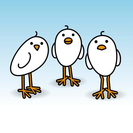 mates: Three Small Cute White Chicks Staring towards camera on White Background Illustration