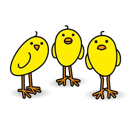 Three Small Cute Yellow Chicks Staring towards camera on White Background Illustration