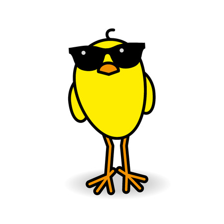 staring: Yellow Chick Wearing Black Sunglasses Staring towards camera on White Background