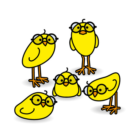 gazing: Five Small Cute Yellow Chicks Wearing Black Round Frame Glasses Staring at Camera on White Background