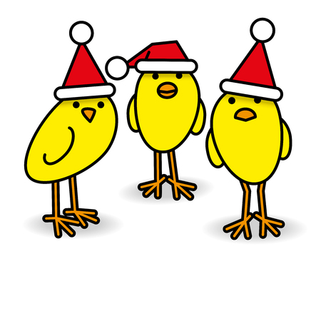 Three Cool Yellow Chicks wearing Red Santa Hats Staring towards camera on White Background