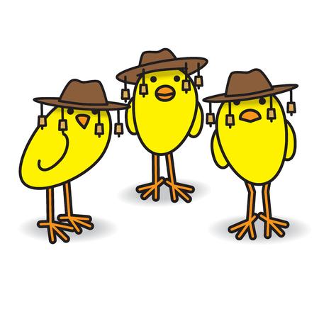 호주 전통 부시 모자를 쓰고 카메라를 응시하는 세 마리의 노란 호주 병아리