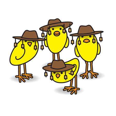 Four Yellow Aussie Chicks Staring towards camera wearing traditional Australian Bush Hats