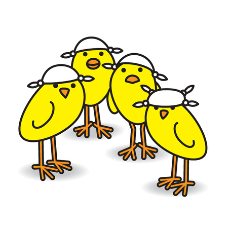 Four Yellow British Chicks wearing Knotted Handkerchiefs on Heads for Sun Protection while staring towards camera on white background