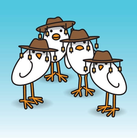 Four White Aussie Chicks Staring towards camera wearing traditional Australian Bush Hats
