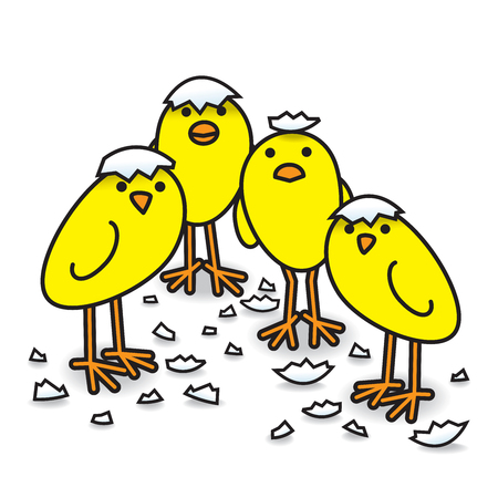 Four Cute Freshly Hatched Yellow Chicks in a tight group with Egg Shell Fragments Staring towards camera Ilustração
