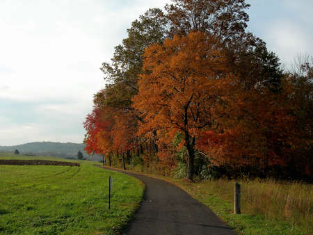 fall at middle creek