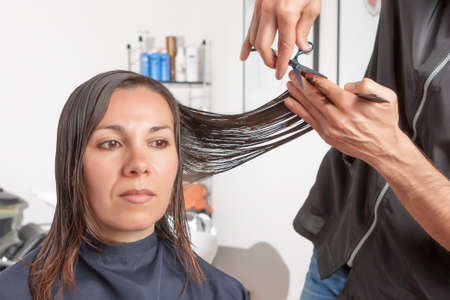 snipping: hairstylist is cutting the hair ends of a woman - focus on the hands of the hairstylist and the scissors