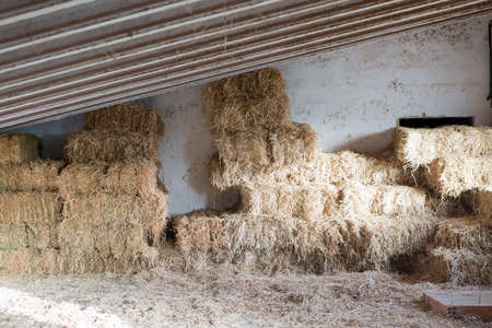 horse stable: stacked hay bales in the barn of a horse stable - useful as a background - focus on the center of the image