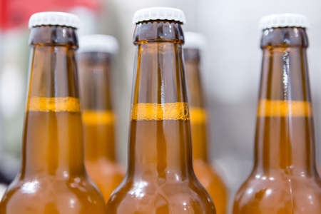 elaboration: Close-up of glass bottles full of beer on a craft beer elaboration process