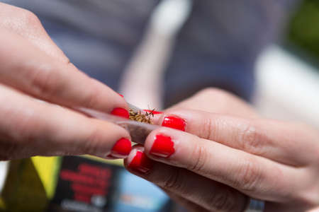 rolling paper: Unrecognizable woman with red nails making joint with rolling paper