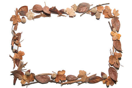 Herfst samenstelling. Vierkant frame gemaakt van herfstbladeren, droge stokken en gedroogd fruit. Plat leggen, bovenaanzicht, kopieergebied beschikbaar. Geïsoleerd op wit