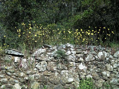 masonary: Stone Wall Stock Photo