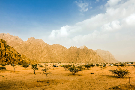 Dry and Rocky Mountains Landscape of Wadi Gin, Saudi Arabia