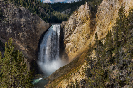 The Yellowstone River flows over Lower Yellowstone Falls before creating the Grand Canyon of Yellowstone Stock Photo