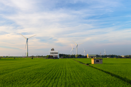 conservation: green meadow with Wind turbines generating electricity