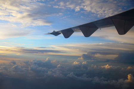wingtips: Wings of an airplane in the sky