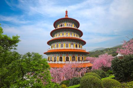 Beautiful Cherry Blossom Garden in Taipei, Taiwan