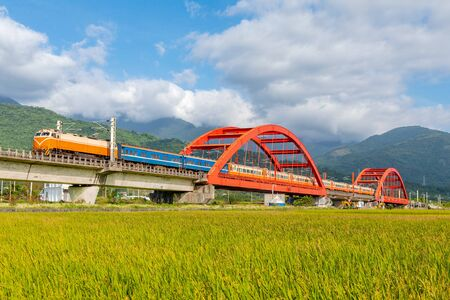 train on the field in yuli, hualien, taiwan