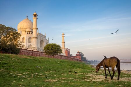 scenery of Taj Mahal, Agra, India