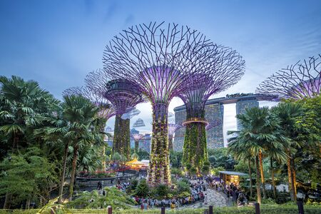 Singapore, Singapore - June 7, 2019: upertree of Gardens by the Bay in singapore at night