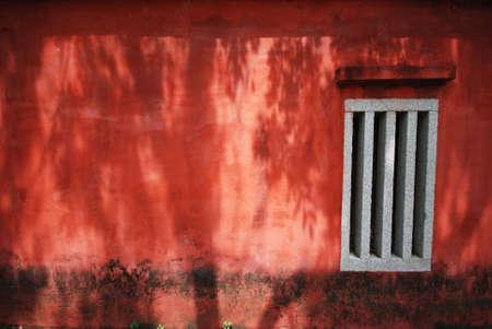 earthy: trees shadow on the wall