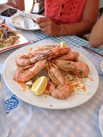 kingsize: Huge prawns