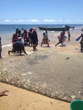 mozambique: Locals survey their catch in Mozambique