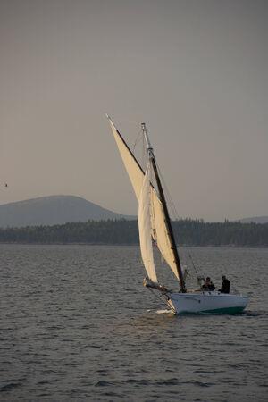 A sailboat sailing in the evening sunset. Stock fotó