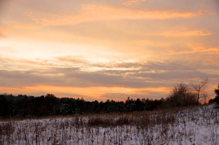 backwoods: Sunset over the stubble covered hills.