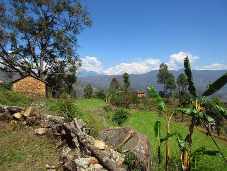 hillside: Some houses perched on the hillside with the mighty Himalayas in the background.