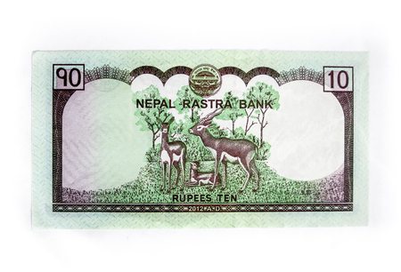 nepali: Nepali rupees in different size currency.