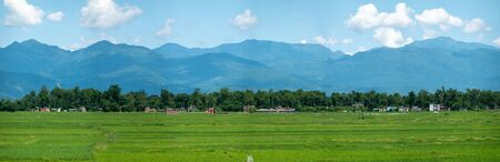 The beautiful green rice fields of Nepal with the mountains in the background.
