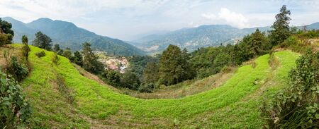 A beautiful panorama of the green terraces on the hillside.