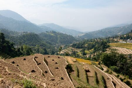 The beautiful terraced hillsides in the Himilaya Foothills of Nepal.