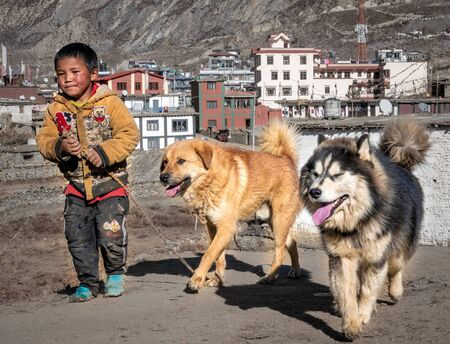 Muktinath, Nepal  - November 10, 2019: A young Nepali boy and his dogs in a small town in the Himalaya Mountains.