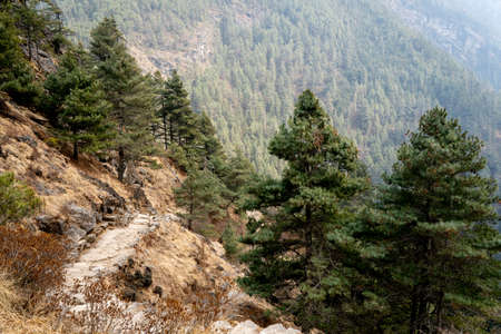 The trail from Lukla to Namche Bazaar in the Khumbu region of Nepal.