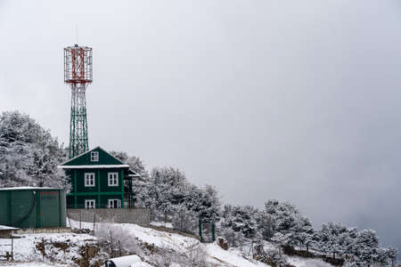The snow covered trees and radio tower on a mountain hillside. 免版税图像
