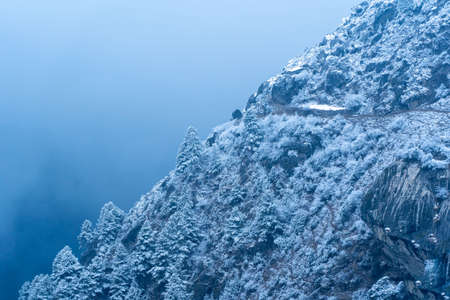 A hillside of trees and rocks covered in snow on a winters evening.
