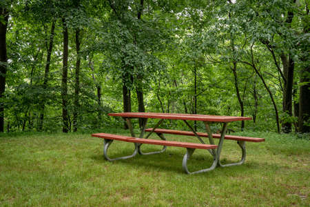 A red picnic table in the forest in the summer.