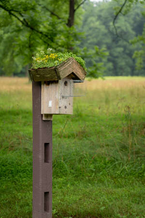 A tree swallow birdhouse on a post with flowers on the roof.