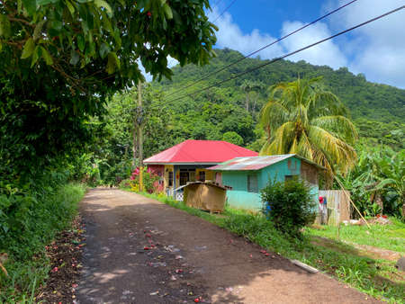 Two small houses along a dirt road in the tropics of Grenada.