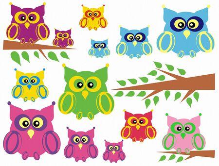 Illustration of owl