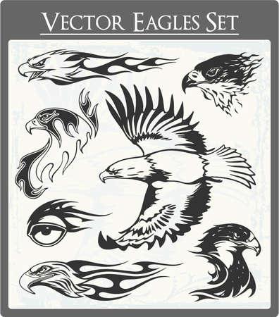 Águila Vectores Ilustración de vector