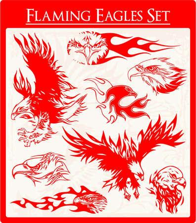 aguila volando: Águila Vectores Vectores