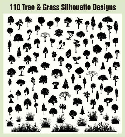 Sylwetki drzew