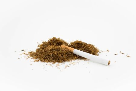 Cigar on a stack of natural tobacco on white background. A cigarette is a dried plant normally of tobacco. Stock Photo