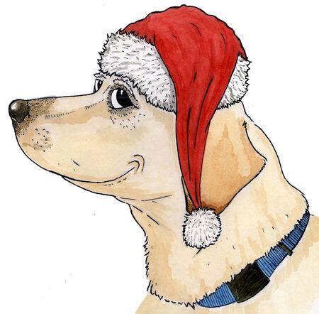 Canine Christmas Reklamní fotografie - 16872609